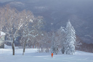 1人のスキーは寂しい